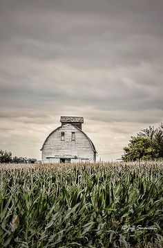 A lot of these kind of barns in northwest Iowa.