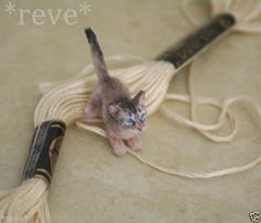 OOAK Realistic Handmade Somali Kitten Miniature 1 12 Sculpture Reve | eBay