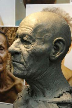 Sculpture Head, Sculptures Céramiques, Head Anatomy, Anatomy Art, 3d Face Model, Anatomy Sculpture, Traditional Sculptures, Female Male, Art Challenge