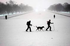 People cross-country ski past the Reflecting Pool on the National Mall after a snowstorm on Saturday after snow blanketed the city National Mall, New York, Winter Storm, Cross Country Skiing, Extreme Weather, Ghost Towns, East Coast, Winter Wonderland, Costa