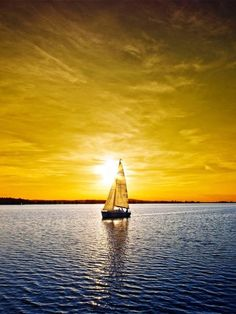 Evening Gold