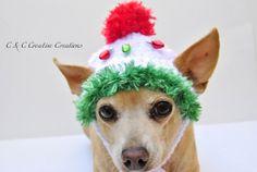 Christmas Lights Dog Hat