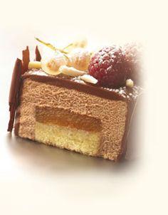 Callebaut - Mousse cake (Created by Axel Sachem - Callebaut Chocolate Ambassador Belgium)