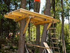 Como hacer una casa en el árbol - Taringa!