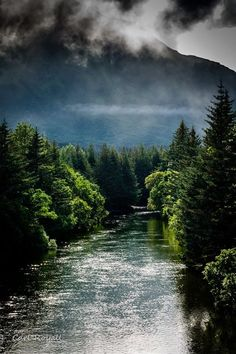 BUSKIN RIVER STATE RECREATIONAL AREA....Kodiak Island.....photo by Carl Rayall