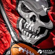 Bay Sports, New Jersey Devils, Tampa Bay Buccaneers, Houston Astros, American Football, Nfl, Superhero, Confused, King