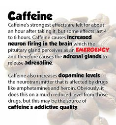 Caffeine Effects Pituitary Gland, Adrenal Glands, Caffeine Effects, Coffee Health, Neurons, Medicine, Tea, Food, Nerve Cells