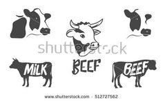 Vector set of cow and bull silhouette. Illustration of cow, bull head. Badges, emblems and design elements. Icon Set, Badges, Design Elements, Latte, Art Ideas, Moose Art, Beef, Silhouette, Crafts