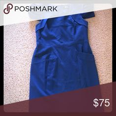 Blue Wool dress. Beautiful fabric. Very well made. Like brand new.  Cute puffy sleeves and front pockets shown in pictures. Gorgeous blue color. Fully lined. Zips up back Adrianna Papell Dresses Midi