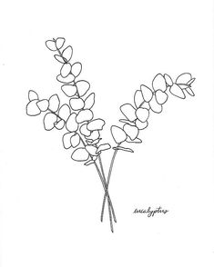 eucalyptus drawing simple black and white . Botanical Line Drawing, Floral Drawing, Botanical Drawings, Botanical Illustration, Botanical Prints, Illustration Art, Tree Line Drawing, Eucalyptus Branches, Art Aquarelle