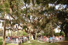 Married under a giant oak | Coral & Navy Vintage Inspired Nautical Wedding At The Ribault Club Jacksonville Florida | Photograph by Britney Kay Photography   http://storyboardwedding.com/vintage-nautical-wedding-ribault-club-jacksonville-florida