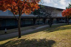 Nara National Museum (奈良国立博物館新館). / Architect : Junzo Yoshimura (設計:吉村順三).