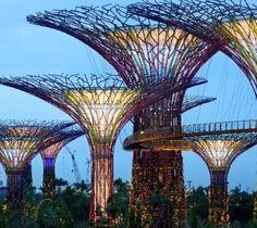 Solar trees in Singapore