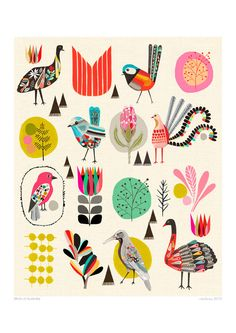 BIRDS OF AUSTRALIA art print by Inaluxe