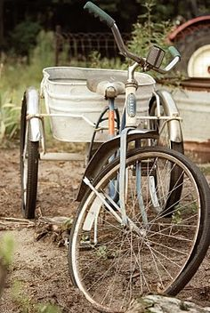 Bike with a bucket. For plants, groceries. Drinks at a party.