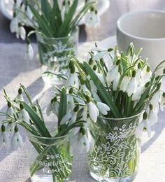 Oricine ştie că 8 martie este Ziua Femeii, dar care este istoria acestei sărbători? | ȚĂRĂNCUȚA URBANĂ Spring Wedding Flowers, Romantic Flowers, Spring Bulbs, Spring Blooms, Flower Tea, Flower Pots, White Roses, White Flowers, Buddha Flower