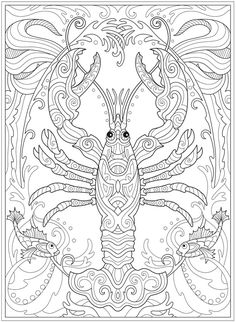 Welcome to Dover Publications Creative Haven Fanciful Sea Life Coloring Book Pattern Coloring Pages, Animal Coloring Pages, Coloring Book Pages, Printable Coloring Pages, Coloring Pages For Kids, Coloring Sheets, Doodle Coloring, Free Coloring, Dibujos Zentangle Art