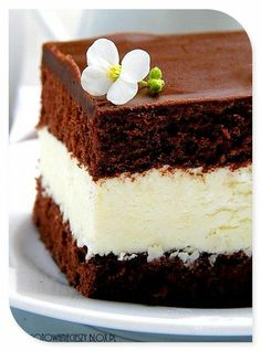Chocolate cakes.