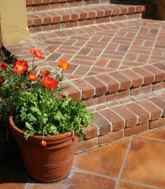 terra cotta flower pots and tiled stairs