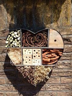 Tak tohle je vyjádření opravdové lásky k hmyzu z celého srdce ;-)