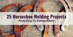 25 Horseshoe Welding Projects From Easy to Extraordinary Welding Tips, Metal Welding, Welding Art, Welding Projects, Welding Ideas, Wood Projects, Horseshoe Projects, Horseshoe Crafts, Horseshoe Art