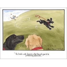 A charming gift for any dog lover, this 'Adolescent Spaniels' print is personally signed by Annie Tempest herself. Print only:. Spaniels, Adolescence, Dog Lovers, Moose Art, Humor, Dogs, Prints, Animals, Animales