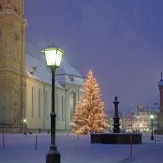 Christmas tree in front of the cathedral in St. Gallen | Weihnachtsbaum im Klosterbezirk St.Gallen.