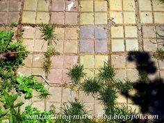 @vontagzutagmari Altes Ziegelpflaster im Garten - Recycling im Garten http://vontagzutag-mariesblog.blogspot.com