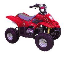 410BX Youth Mini ATV.  A great Christmas gift idea.