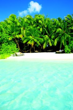 Baros - Maldives...Indian Ocean, now that's paradise!!!!