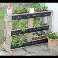 Idea originale per piante aromatiche