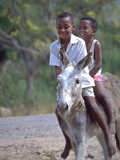 Children riding a Donkey on the Cape Verde Islands -- coastal west Africa