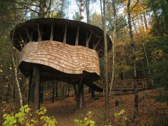 Public treehouse designed and built by students