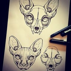 Tattoo cat skull illustrations Ideas for 2019 Tattoo Gato, Desenho Tattoo, Cat Skull Tattoo, Sphynx Cat Tattoo, Cat Tattoos, Rite De Passage, Skull Illustration, Arte Horror, Flash Art