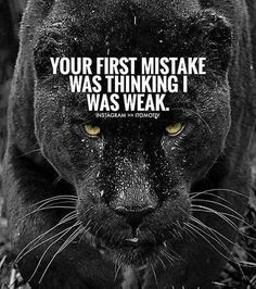 Moving On Quotes : Are u Moving in silence ? Lion Quotes, Wolf Quotes, Joker Quotes, Wisdom Quotes, True Quotes, Great Quotes, Motivational Quotes, Inspirational Quotes, Strong Quotes