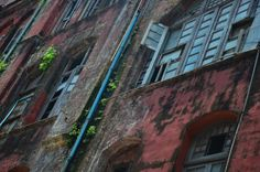 Rundown colonial buildings with plants growing out of the walls.  Living in Sin: Yangon, Myanmar - some pictures from our weekend away