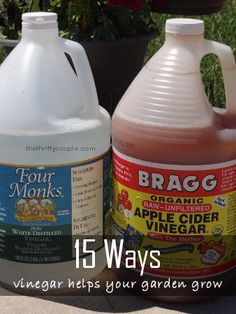 15 ways vinegar helps your gardens grow. 15 uses for vinegar in your gardens and yard.  Some very unique ideas too!