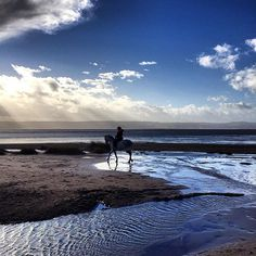 On shoot #AW16 range! Winter beach rides #thisislife #horse #equestrian #tbt