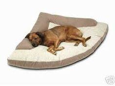 cama de cachorro - Pesquisa Google