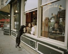 Travel - Philip-Lorca diCorcia What Is Fiction, Master Of Fine Arts, Environmental Portraits, Urban Setting, Fictional World, A Level Art, Famous Photographers, Photo Journal, Documentary Photography