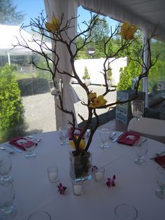 Orchids and candles on branch centerpiece -- also cute with little tissue paper flowers on the branch