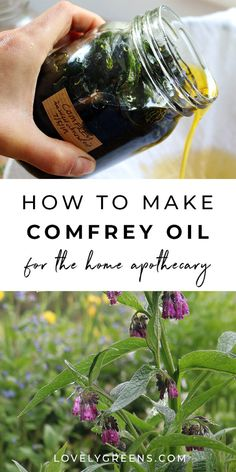 How make Comfrey Oil and why it's controversial. Includes using comfrey externally to heal bruises sprains and other injuries information on alkaloid toxicity how to make comfrey oil and a recipe for making a healing comfrey salve Cold Home Remedies, Natural Health Remedies, Herbal Remedies, Healing Herbs, Medicinal Herbs, Healing Books, Healing Quotes, Be Natural, Natural Healing