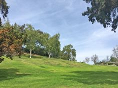 El Dorado Park in Mission Viejo. Sprawling park near the school, great mature trees and field for play.