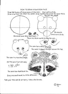Drawing Animals Tips How to Draw Worksheets for Young Artist: How To Draw A Raccoon Face, Lesson and Worksheet. Drawing Lessons, Drawing Techniques, Art Lessons, Animal Drawings, Pencil Drawings, Raccoon Drawing, Learn To Draw Cartoons, Art Handouts, Art Worksheets