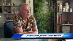 Dětský ranč Hlučín Button Down Shirt, Men Casual, Blouse, Mens Tops, Shirts, Women, Fashion, Moda, Dress Shirt