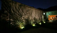 Landscape Lighting Helps Apartment Marketing Burn Into The in outdoor lighting around pool Outdoor Garden Lighting, Plant Lighting, Deck Lighting, Exterior Lighting, Tree Lighting, Cool Lighting, Lighting Ideas, Tropical Backyard, Tropical Landscaping