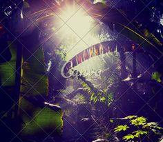 Sampul Album – Desain Tanpa Judul