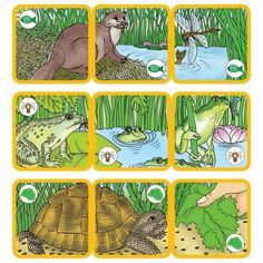 Výsledok vyhľadávania obrázkov pre dopyt čím sa živia zvieratá Kids Crafts, Arts And Crafts, Zoology, Activities For Kids, Comics, Type 3, Montessori, Puzzles, Theater