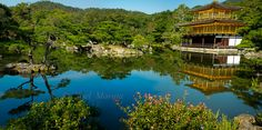 Beautiful gardens of Kyoto | Travel Photo Discovery #japan #kyoto