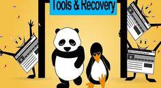 Google Panda-Penguin Penalty Checkers & Recovery